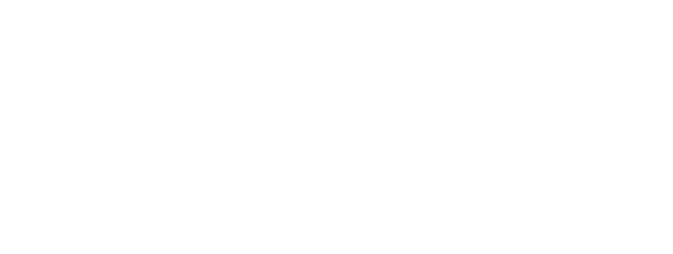 Newsroom Director
